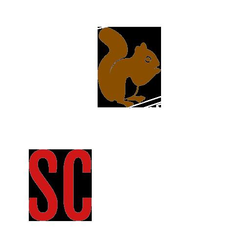 scelectronics-invert